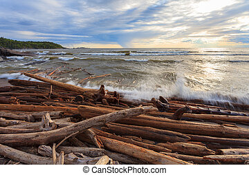 Lake Superior - Waves push driftwood ashore at Lake...