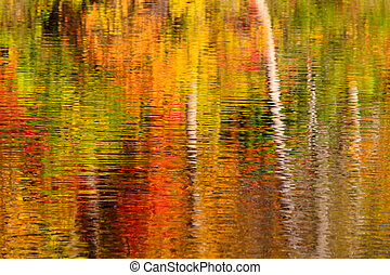 Abstract of fall colour reflections