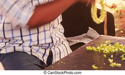 Indian Man Hands Compose Jasmine Flower Garland - closeup...