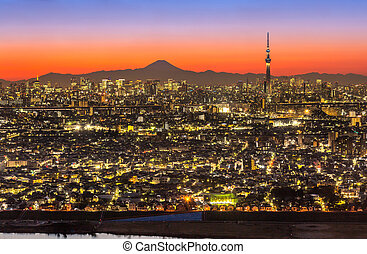 Tokyo Sunset - Tokyo city aerial view and mountain fuji