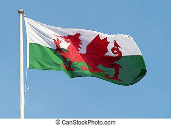 Welsh flag blowing in the wind. - Welsh flag (Y Ddraig Goch)...