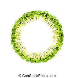 background cress ring - background ring of cress against...
