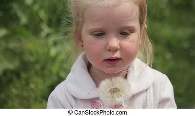 little girl blond blowing a dandelion