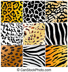 wild animals skin patterns - Set of nine different wild...