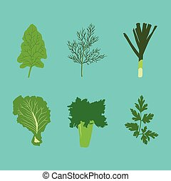 Set of vector vegetables in flat style