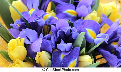 Bouquet of irises with tulips - Beautiful bouquet of irises...