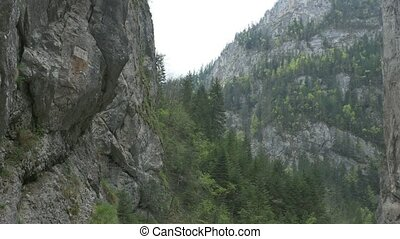 Steep Canyon with Vegetation - Pan shot to the massive rocks...