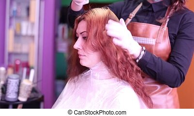 Hairdressers Hair Examines Client Before Painting HD