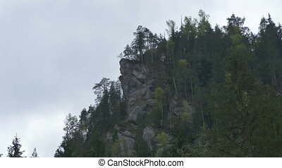 Mountain Cliff and Fir Trees - Pan shot to a mountain massif...