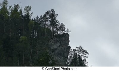 Craggy Mountain with Trees - A craggy cliff with fir forest...