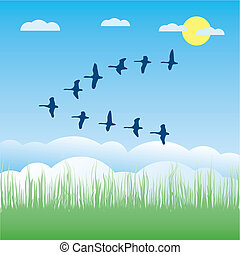 Birds migratory vector illustration cartoon