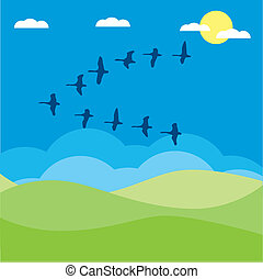 Birds migratory vector illustration