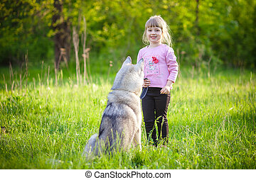 little girl in the park with a dog Husky