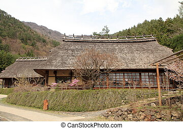Japanese thatched roof house and cherry blossoms in Saiko...