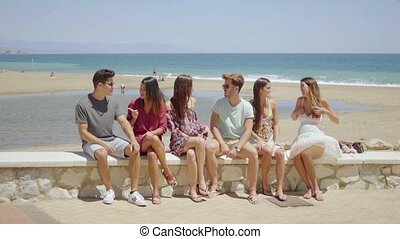 Group of young students relaxing at the seaside sitting on a...