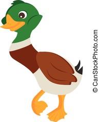Cartoon Duck Vector Illustration - Cartoon duck drake Vector...