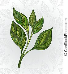 green tea sprout - Green tea sprout, decorated with an...
