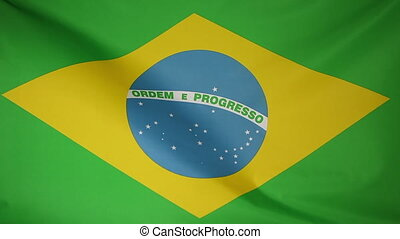 National flag of Brazil in the wind
