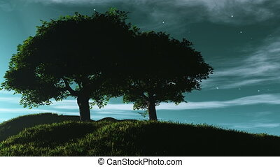 night 19 - couple trees on top of a hill, stars twinkling at...