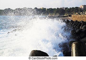 blue bulgarian sea waves near small city kitten