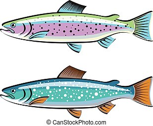Trout rainbow and lake game fish