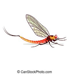 Mayfly vector illustration - Mayfly vector water bug...