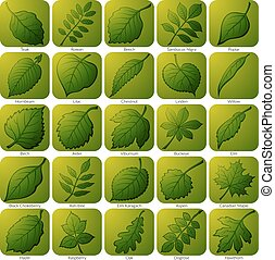 Icons with Leaves, Set - Set of Green Square Nature Icons...