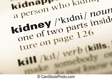 Close up of old English dictionary page with word kidney