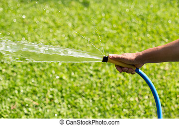 Gardener watering garden from hose in summer time