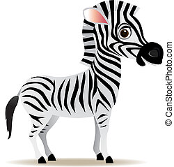 vector zebra cartoon