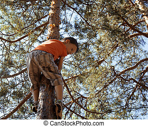 little cute real boy climbing on tree hight, outdoor...