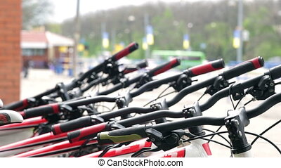 Bicycles parked in line on park