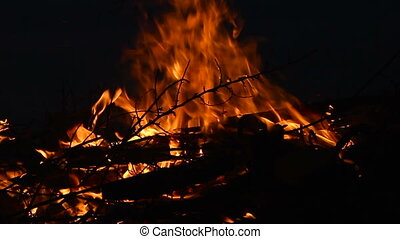 Campfire with burning log wood and twigs at night - Slow motion