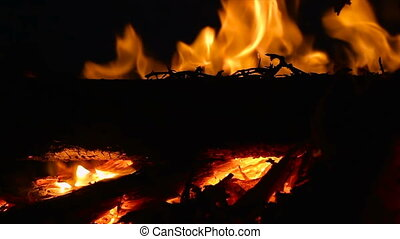 Closeup of campfire with burning log wood and twigs at night - Slow motion