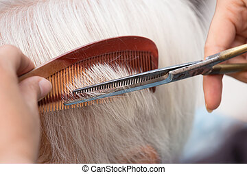 cutting senior womans gray hair - Hair stylist cutting...