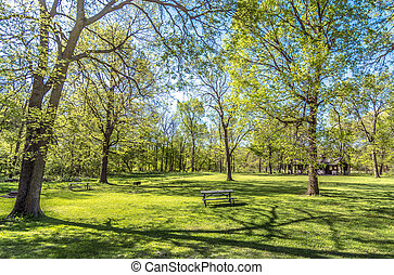 Spring in Iowa - Captured this in at park in Waterloo, Iowa...