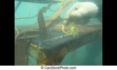 Underwater welding