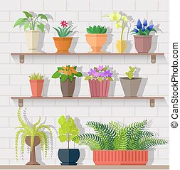 Houseplant Set Design Flat Concept - Houseplant set design...