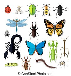 Set of Various Insects Design Flat