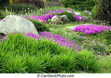 Garden Design with Rocks and Flowers (5)