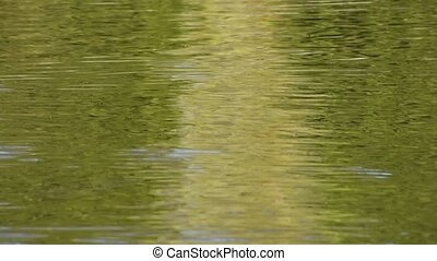 Running green ripples on water surface