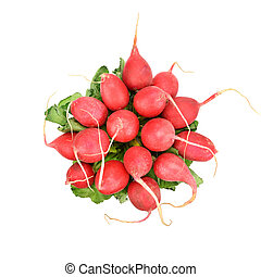 Red radish isolated on a white background
