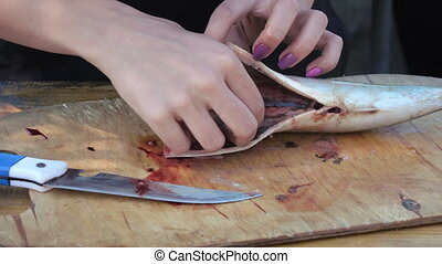 Butchering mackerel on nature - Nature is cut mackerel on...