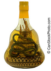 Alcohol tincture on poisonous snakes in bottle