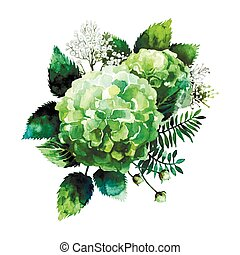 Green watercolor hydrangea vignette isolated on white...