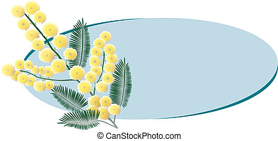 Mimosa bunch with copy space