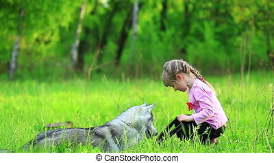 Little girl playing with dog at green graas siberian husky