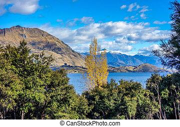 New Zealand - Wanaka Lake - Autumn on the coast of Wanaka...