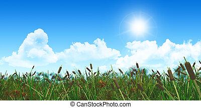 3D grassy landscape - 3D render of a grassy landscape