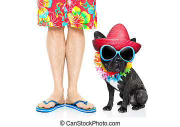 dog summer vacation - french bulldog dog and owner ready to...